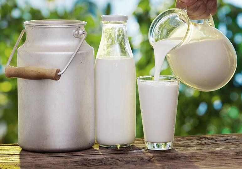 milk in glasses