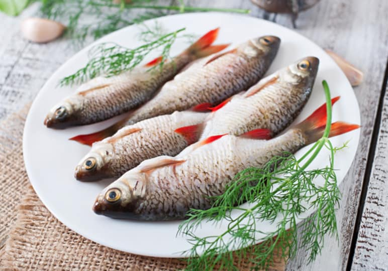 fish on a plate with dill