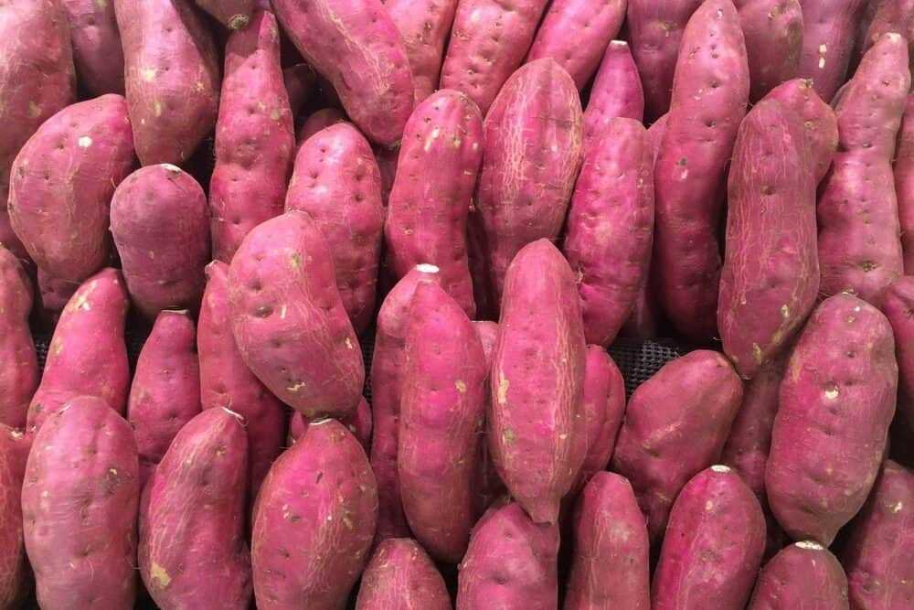 A bunch of sweet potatoes